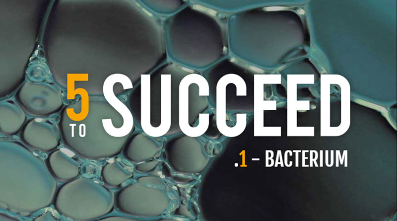 5 to Succeed - Ep 1 Bacterium